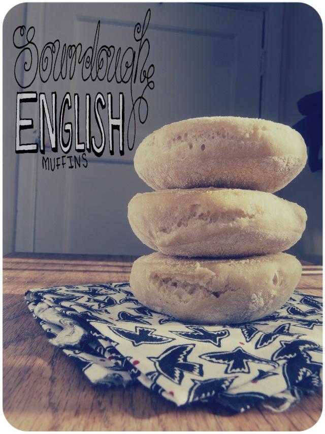 sourdough english muffins 1
